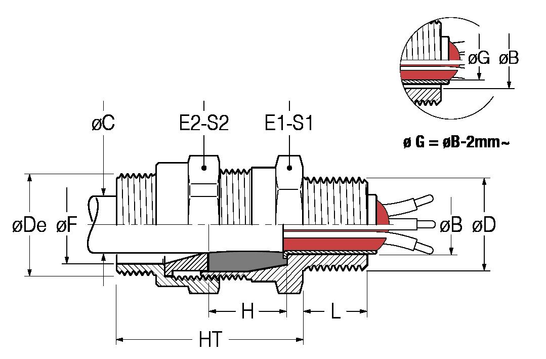BNM-disegno