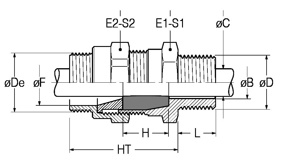 RNM-disegno