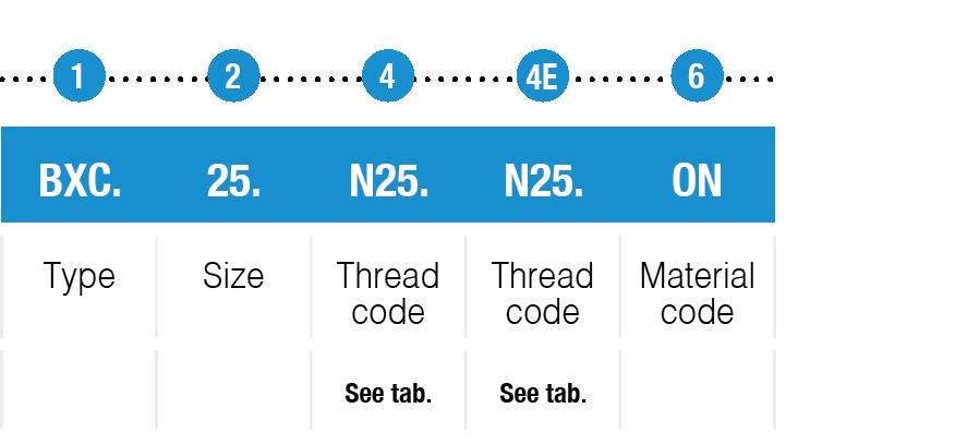 example code BXC type table