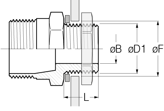 pag19-cylindrical-disegno