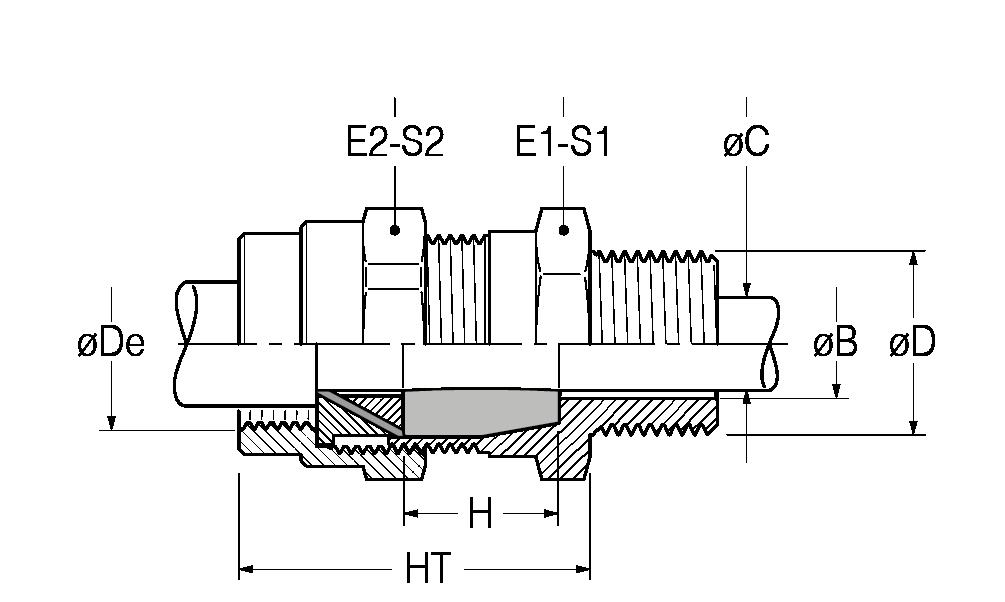 RAC-disegno-21