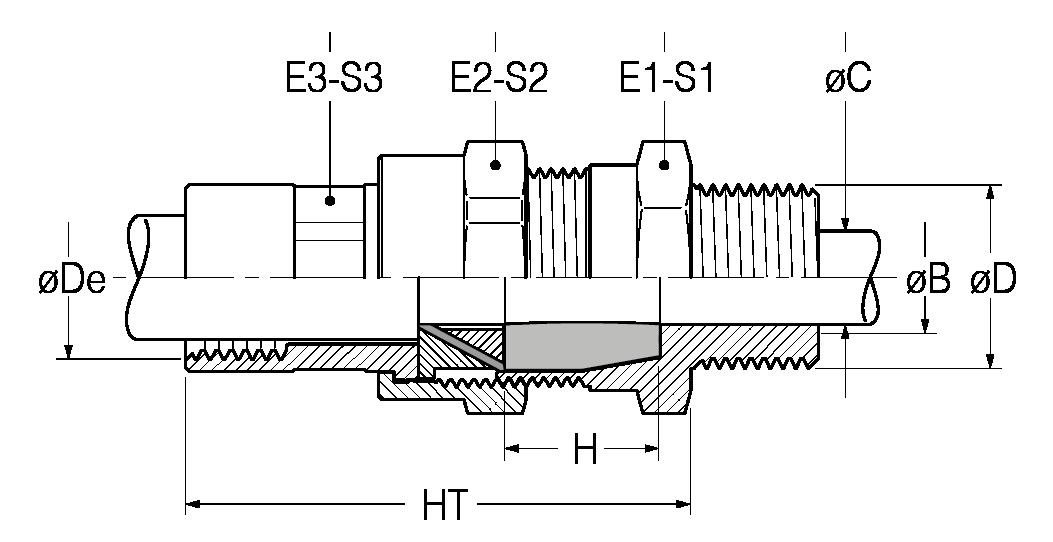 RACS-disegno-21