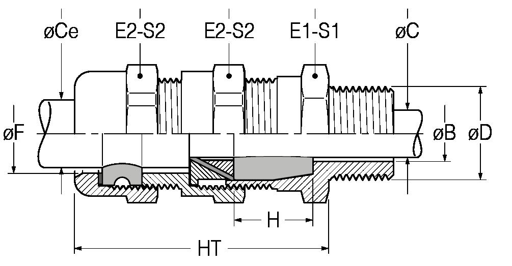 RAD-disegno-21