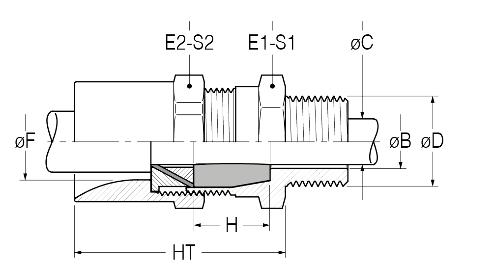 RAT-disegno-21