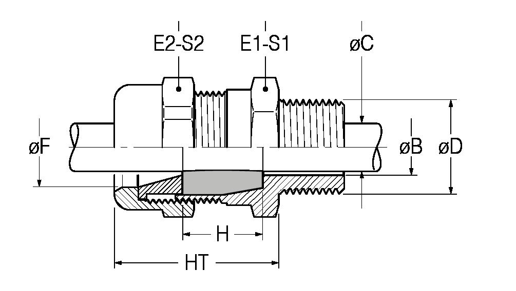 RN-disegno-21