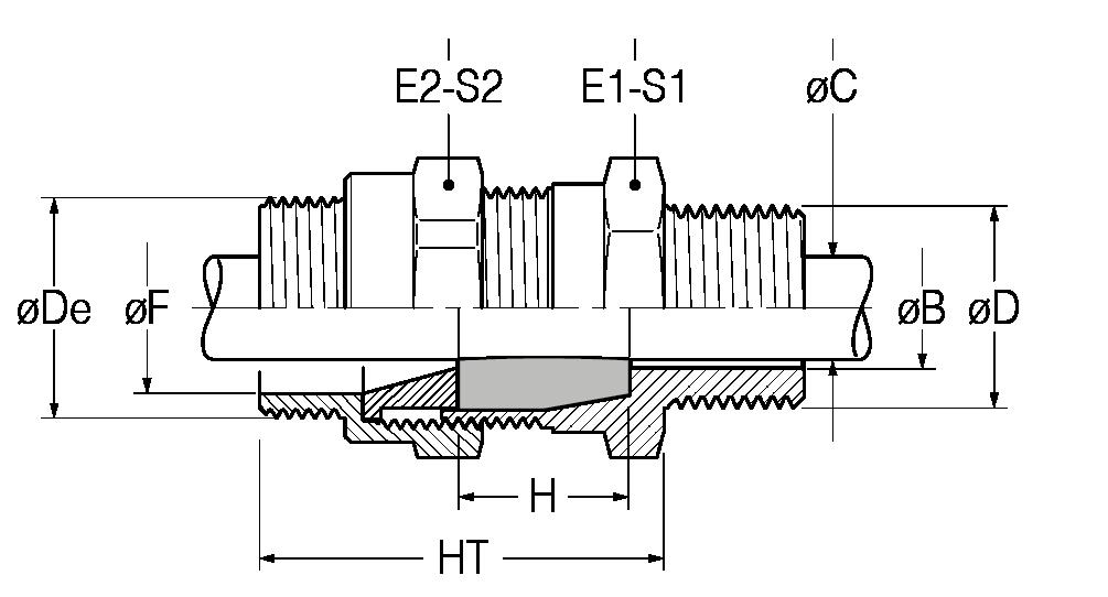 RNM-disegno-21