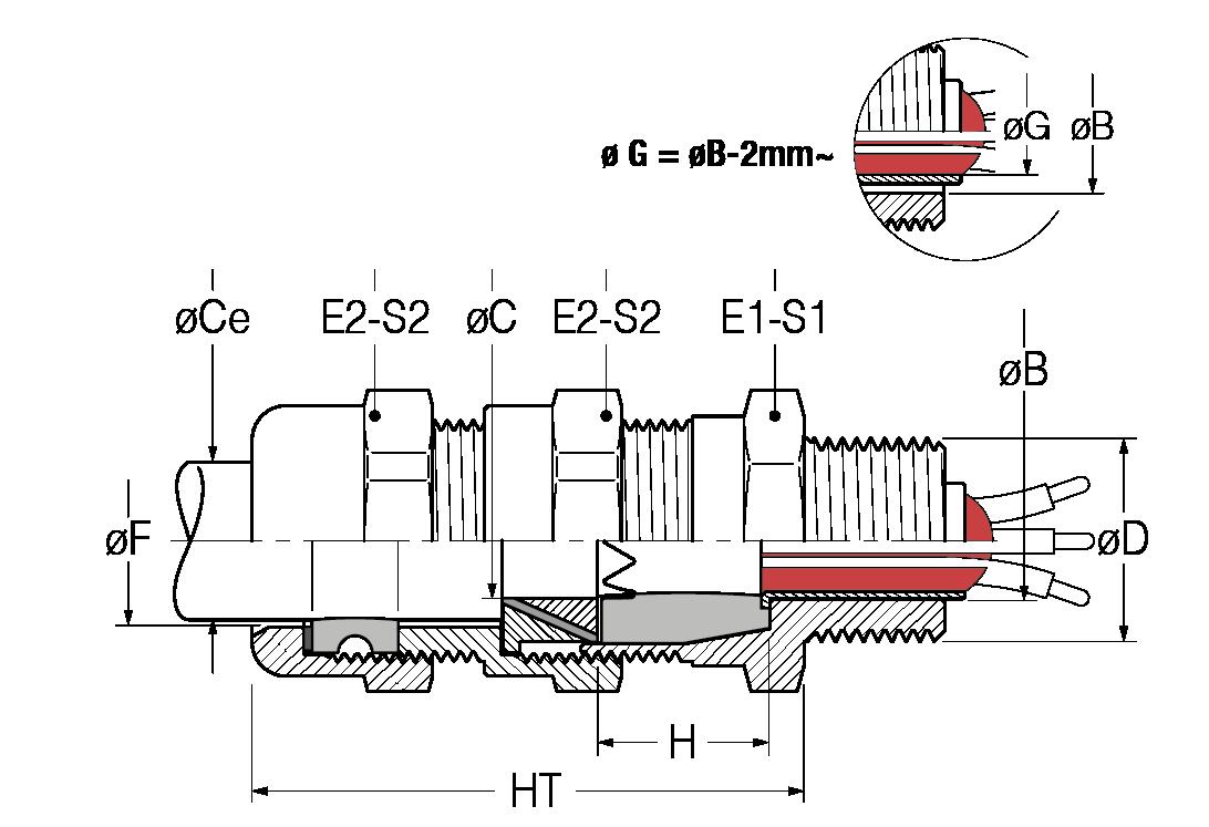 BALD-disegno-21