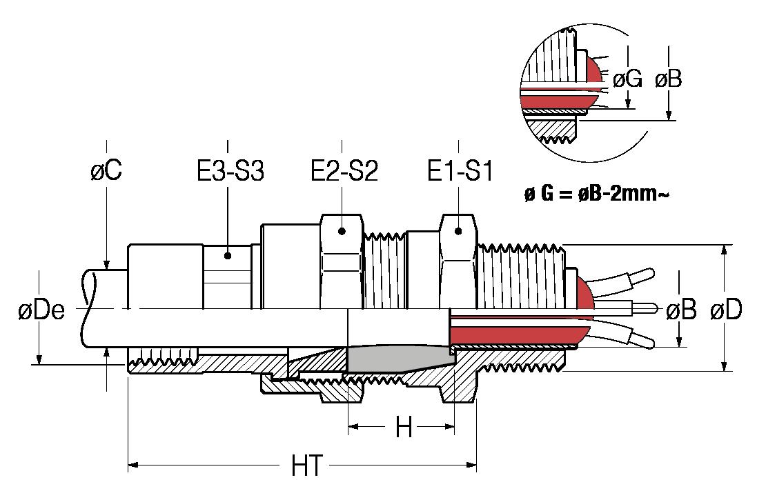 BNCS-disegno-21