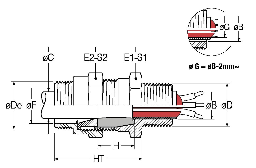 BNM-disegno-21