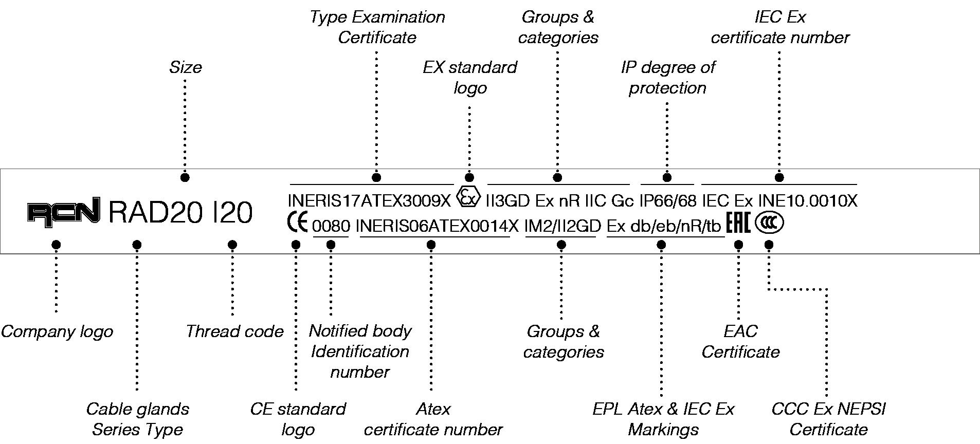 pag156-codice-21